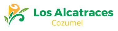 Los Alcatraces Cozumel