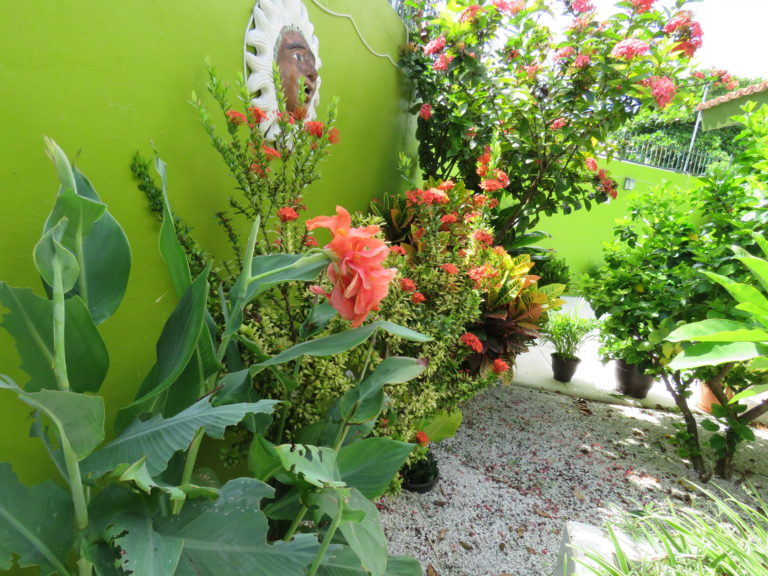 Tropical garden area, vacation rental condo in Cozumel, Mexico